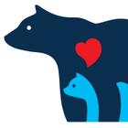 Mama Bear Massage logo