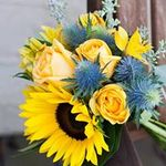 Duffy's Flowers & Plants, Solon Ohio profile image.