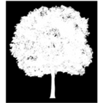 Green Line Tree Services profile image.