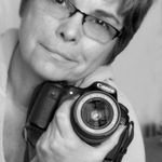 Deb Potis Photography profile image.