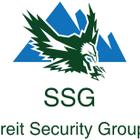 Secureit Security Group Inc. logo