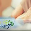 Luminary Counseling, PLLC  profile image