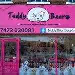 Teddy Bear Dog Groomimg L profile image.