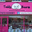 Teddy Bear Dog Groomimg L