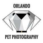 Samgold Photography profile image.