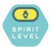 Spirit Level profile image