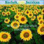 Norfolk SEO Services