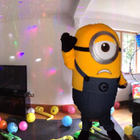 Despicable Parties