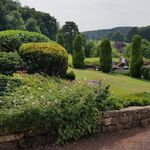 MR Landscape and Garden Maintenance profile image.