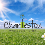 Charleston Wholesale Florist profile image.