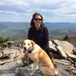 Go Dog Go LLC profile image.