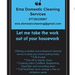 Emz Domestic Cleaning Services profile image.