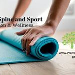 Premier Spine and Sport Rehabilitation & Wellness profile image.