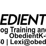 Obedient K-9 profile image.