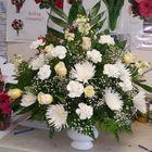 Yosvi Flowers