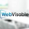 Webvisable Group  profile image