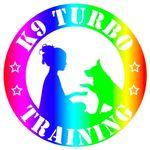 K9 Turbo Training profile image.