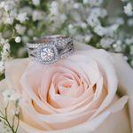 Joanna Monger Photography profile image.