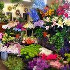 Pondview Florist