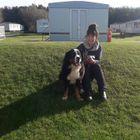 Kingston Dog Walking and Urgent Care