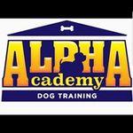 ALPHAcademy Dog Training profile image.