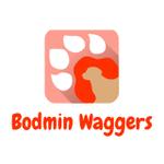 Wadebridge Waggers profile image.