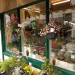 flower and garden shop profile image.