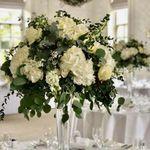 Mrs Bouquets  profile image.