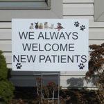 Auburn Animal Hospital profile image.