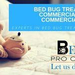 Bernard's Pro Clean & Prep profile image.