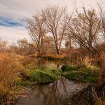 Stephen Sysak Photography profile image.
