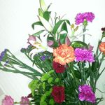 Islington green flowers profile image.