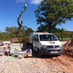 Nant tree services profile image.