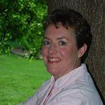 Wedding Cake Connection profile image.