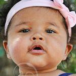 Lyndsey Steele Photography profile image.