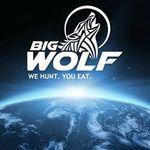 Bigwolfmarketing.co.uk profile image.