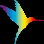 AV Creations Limited profile image.