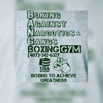 Bang Boxing Gym profile image.