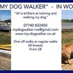 My Dog Walker profile image.