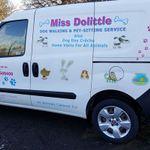 Miss dolittle profile image.