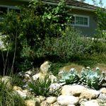 Artemisia Landscape Architecture profile image.