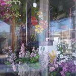 Sherwood Florist  profile image.