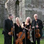 Beeston Arts String Quartet profile image.