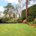 Andy*Home&Garden profile image.