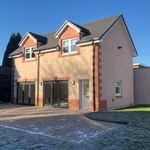 Murphy roughcasting and roof tiling ltd profile image.