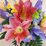 Passion Flower Design profile image.