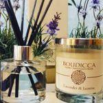 Boudicca Design profile image.