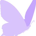 Silkscreen Videos profile image.