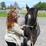 Wellness in Harmony llc profile image.