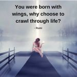 Your Dream Catalyst profile image.